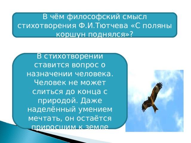 В чём философский смысл стихотворения Ф.И.Тютчева «С поляны коршун поднялся»? В стихотворении ставится вопрос о назначении человека. Человек не может слиться до конца с природой. Даже наделённый умением мечтать, он остаётся приросшим к земле