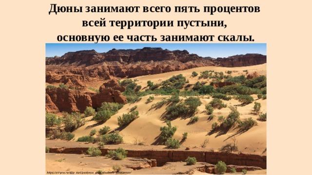 Дюны занимают всего пять процентов  всей территории пустыни,  основную ее часть занимают скалы.