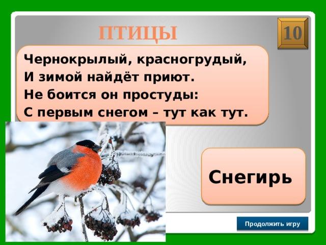 ПТИЦЫ 10  Чернокрылый, красногрудый, И зимой найдёт приют. Не боится он простуды: С первым снегом – тут как тут.  Снегирь Продолжить игру РАУНД II