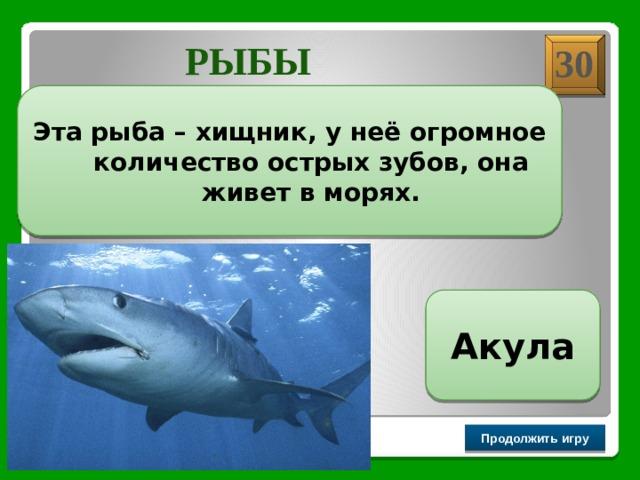 РЫБЫ 30 Эта рыба – хищник, у неё огромное количество острых зубов, она живет в морях. Акула Продолжить игру РАУНД II