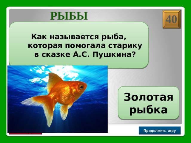 РЫБЫ 40 Как называется рыба, которая помогала старику в сказке А.С. Пушкина? Золотая рыбка Продолжить игру РАУНД II
