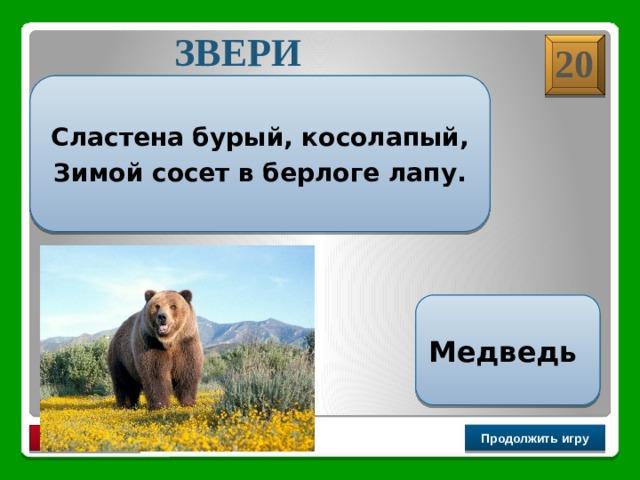 ЗВЕРИ 20  Сластена бурый, косолапый, Зимой сосет в берлоге лапу.  Медведь Продолжить игру РАУНД II