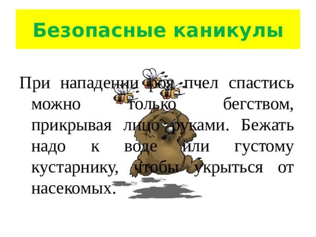 Безопасные каникулы При нападении роя пчел спастись можно только бегством, прикрывая лицо руками. Бежать надо к воде или густому кустарнику, чтобы укрыться от насекомых.