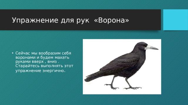 Упражнение для рук «Ворона»