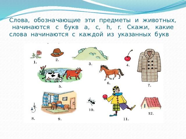 Слова, обозначающие эти предметы и животных, начинаются с букв a, c, h, r. Скажи, какие слова начинаются с каждой из указанных букв