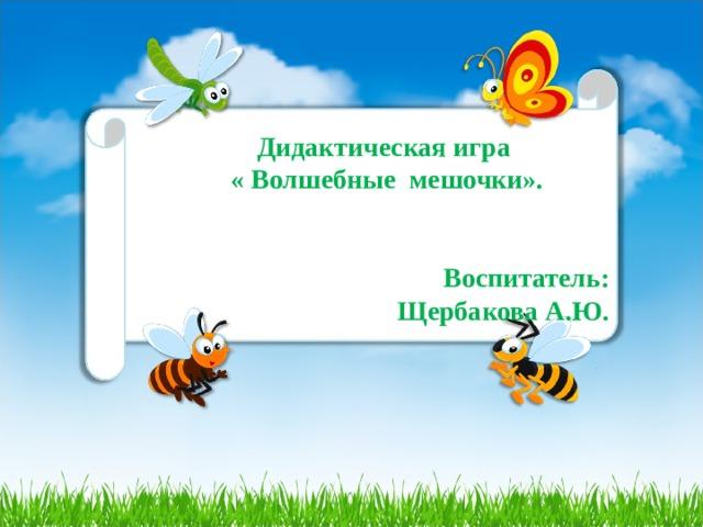 Дидактическая игра « Волшебные мешочки».   Воспитатель: Щербакова А.Ю.