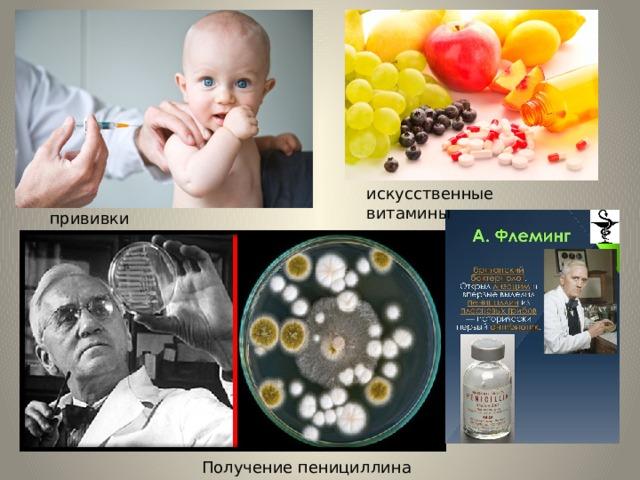 искусственные витамины прививки Получение пенициллина