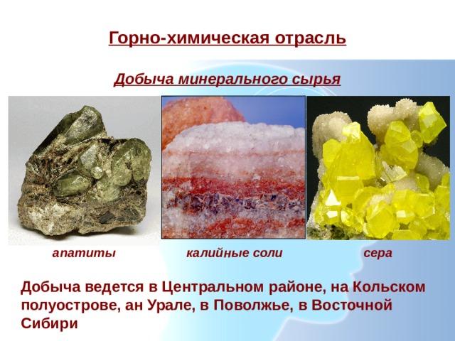 Горно-химическая отрасль Добыча минерального сырья апатиты калийные соли сера Добыча ведется в Центральном районе, на Кольском полуострове, ан Урале, в Поволжье, в Восточной Сибири