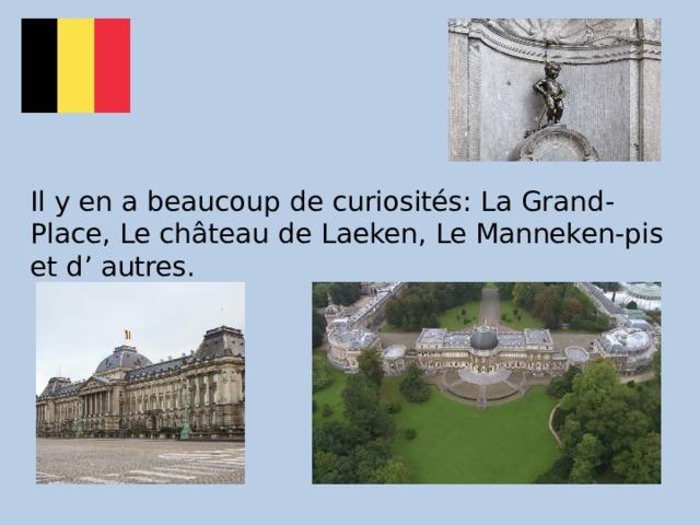Il y en a beaucoup de curiosités: La Grand-Place, Le château de Laeken, Le Manneken-pis et d' autres.
