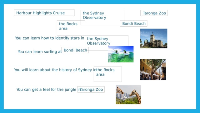 Harbour Highlights Cruise Taronga Zoo the Sydney Observatory Bondi Beach the Rocks area You can learn how to identify stars in the Sydney Observatory Bondi Beach You can learn surfing at the Rocks area You will learn about the history of Sydney in You can get a feel for the jungle in Taronga Zoo