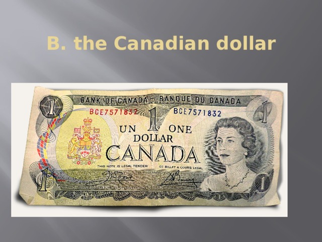 B. the Canadian dollar