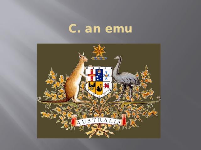 C. an emu