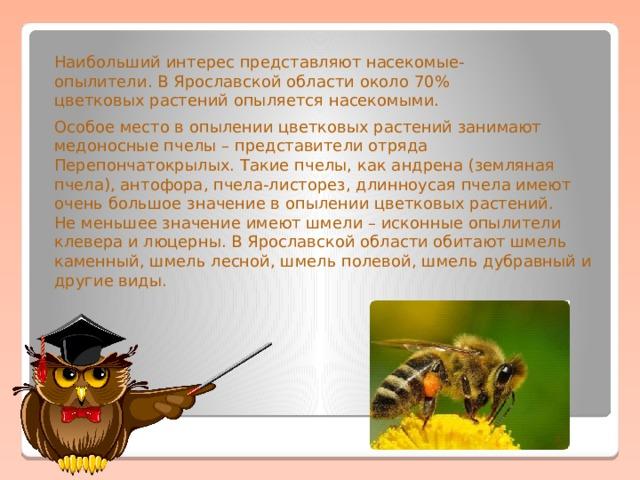 Наибольший интерес представляют насекомые-опылители. В Ярославской области около 70% цветковых растений опыляется насекомыми. Особое место в опылении цветковых растений занимают медоносные пчелы – представители отряда Перепончатокрылых. Такие пчелы, как андрена (земляная пчела), антофора, пчела-листорез, длинноусая пчела имеют очень большое значение в опылении цветковых растений. Не меньшее значение имеют шмели – исконные опылители клевера и люцерны. В Ярославской области обитают шмель каменный, шмель лесной, шмель полевой, шмель дубравный и другие виды.