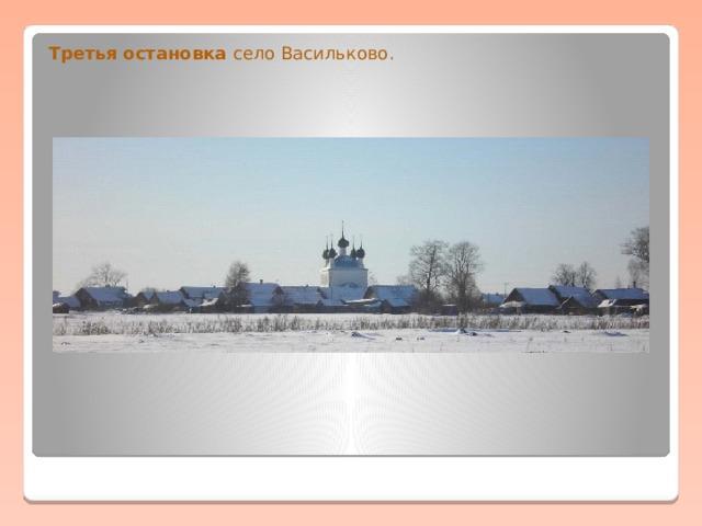 Третья остановка село Васильково.