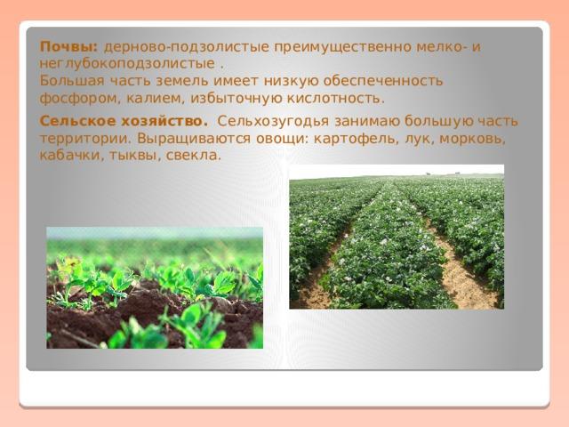Почвы: дерново-подзолистые преимущественно мелко- и неглубокоподзолистые . Большая часть земель имеет низкую обеспеченность фосфором, калием, избыточную кислотность. Сельское хозяйство. Сельхозугодья занимаю большую часть территории. Выращиваются овощи: картофель, лук, морковь, кабачки, тыквы, свекла.