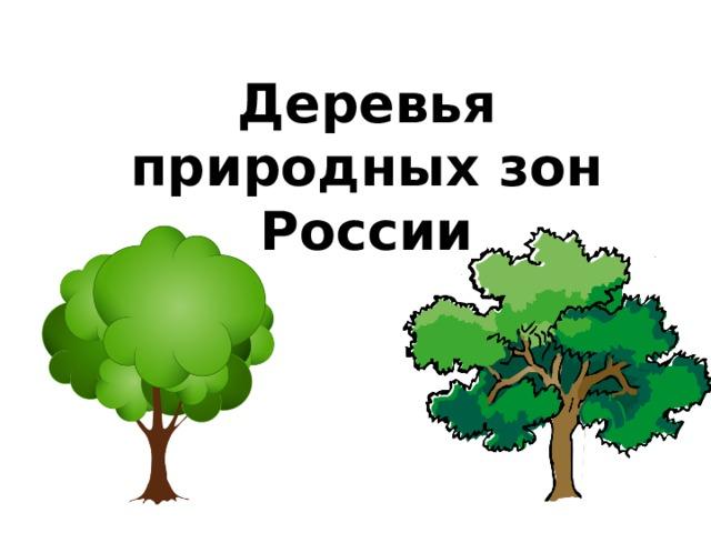 Деревья природных зон России