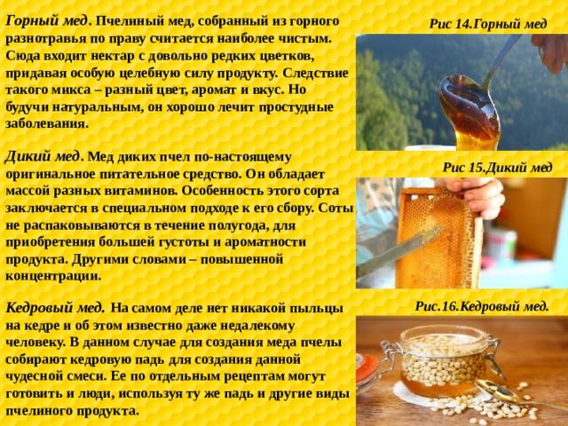 Горный мед . Пчелиный мед, собранный из горного разнотравья по праву считается наиболее чистым. Сюда входит нектар с довольно редких цветков, придавая особую целебную силу продукту. Следствие такого микса – разный цвет, аромат и вкус. Но будучи натуральным, он хорошо лечит простудные заболевания. Рис 14.Горный мед Дикий мед . Мед диких пчел по-настоящему оригинальное питательное средство. Он обладает массой разных витаминов. Особенность этого сорта заключается в специальном подходе к его сбору. Соты не распаковываются в течение полугода, для приобретения большей густоты и ароматности продукта. Другими словами – повышенной концентрации. Рис 15.Дикий мед Кедровый мед. На самом деле нет никакой пыльцы на кедре и об этом известно даже недалекому человеку. В данном случае для создания меда пчелы собирают кедровую падь для создания данной чудесной смеси. Ее по отдельным рецептам могут готовить и люди, используя ту же падь и другие виды пчелиного продукта. Рис.16.Кедровый мед.