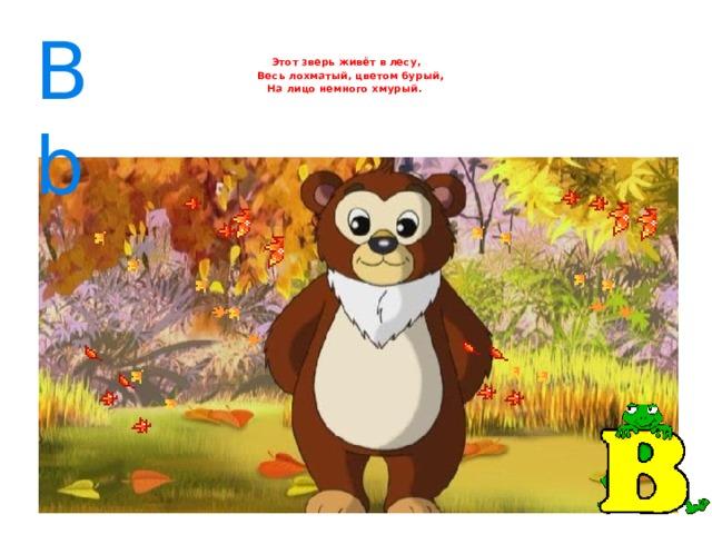 Bb    Этот зверь живёт в лесу,  Весь лохматый, цветом бурый ,   На лицо немного хмурый.