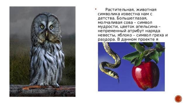 Растительная, животная символика известна нам с детства. Большеглазая, молчаливая сова – символ мудрости, цветок апельсина – непременный атрибут наряда невесты, яблоко – символ греха и раздора. В данном проекте я выбрала наиболее известные символы, которые существуют в Англии.