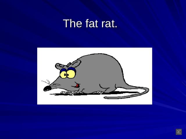 The fat rat.