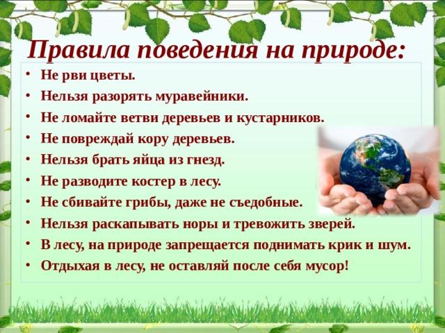 Правила поведения на природе: