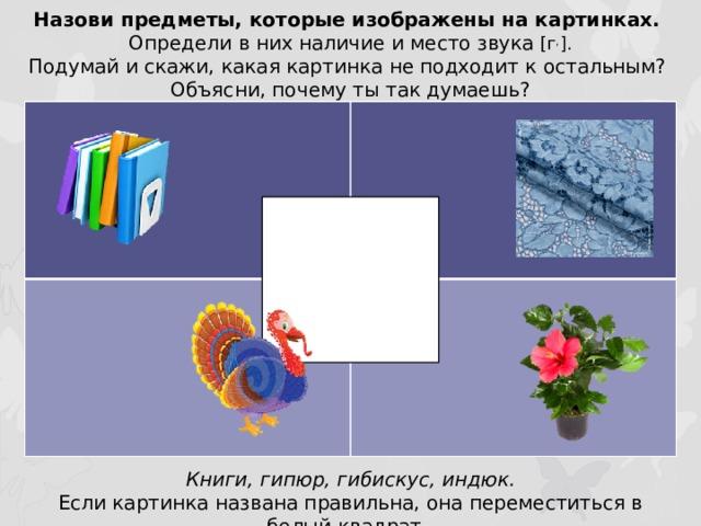 Назови предметы, которые изображены на картинках. Определи в них наличие и место звука [г , ]. Подумай и скажи, какая картинка не подходит к остальным? Объясни, почему ты так думаешь? Книги, гипюр, гибискус, индюк. Если картинка названа правильна, она переместиться в белый квадрат.