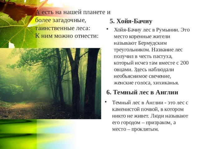 5. Хойя-Бачиу А есть на нашей планете и более загадочные, таинственные леса:  К ним можно отнести:   Хойя-Бачиу лес в Румынии. Это место коренные жители называют Бермудским треугольником. Название лес получил в честь пастуха, который исчез там вместе с 200 овцами. Здесь наблюдали необъяснимое свечение, женские голоса, хихиканья. 6. Темный лес в Англии