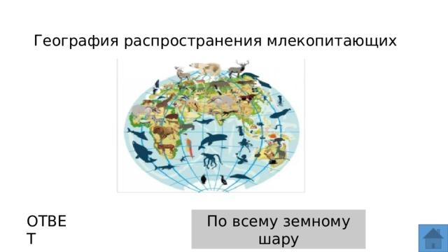 География распространения млекопитающих ОТВЕТ По всему земному шару