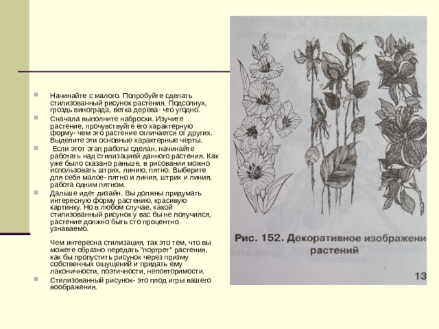 Начинайте с малого. Попробуйте сделать стилизованный рисунок растения. Подсолнух, гроздь винограда, ветка дерева- что угодно. Сначала выполните наброски. Изучите растение, прочувствуйте его характерную форму- чем это растение отличается от других. Выделите эти основные характерные черты.  Если этот этап работы сделан, начинайте работать над стилизацией данного растения. Как уже было сказано раньше, в рисовании можно использовать штрих, линию, пятно. Выберите для себя малое- пятно и линия, штрих и линия, работа одним пятном. Дальше идет дизайн. Вы должны придумать интересную форму растению, красивую картинку. Но в любом случае, какой стилизованный рисунок у вас бы не получился, растение должно быть сто процентно узнаваемо.   Чем интересна стилизация, так это тем, что вы можете образно передать