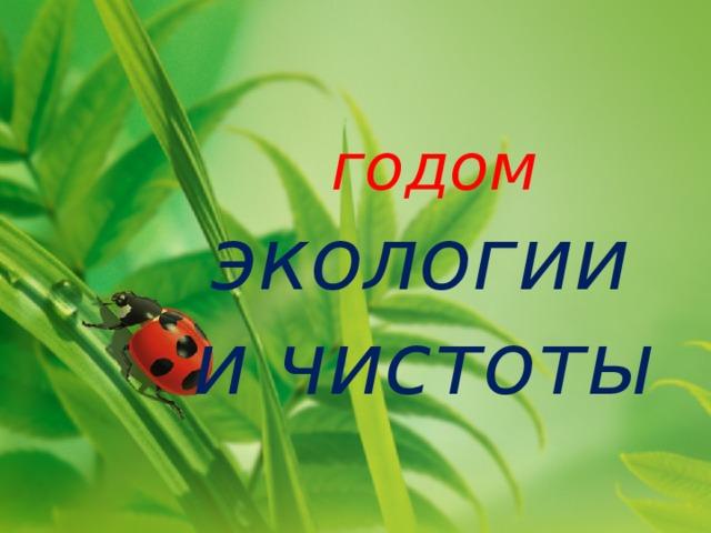 годом   экологии и чистоты