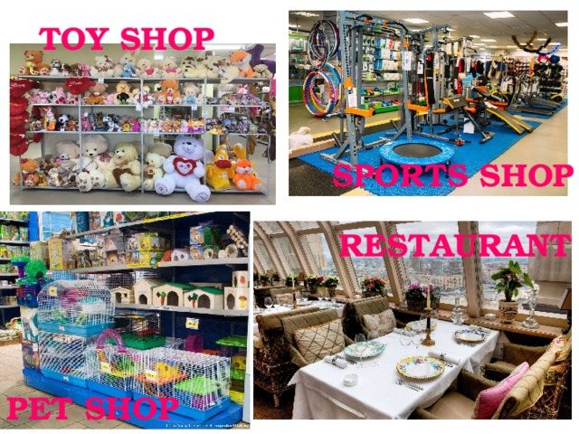 TOY SHOP SPORTS SHOP RESTAURANT PET SHOP