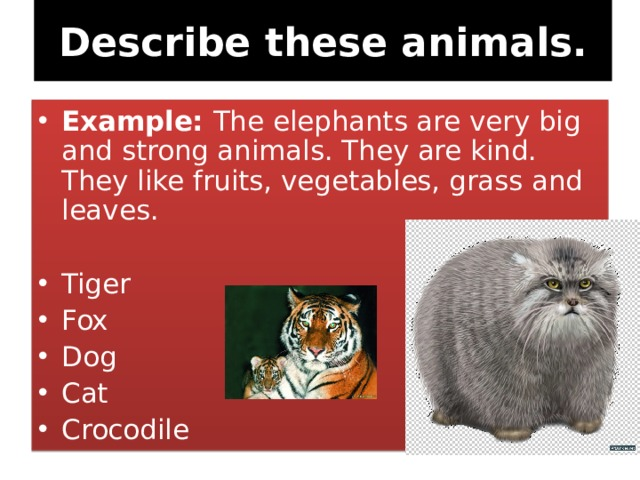 Describe these animals.