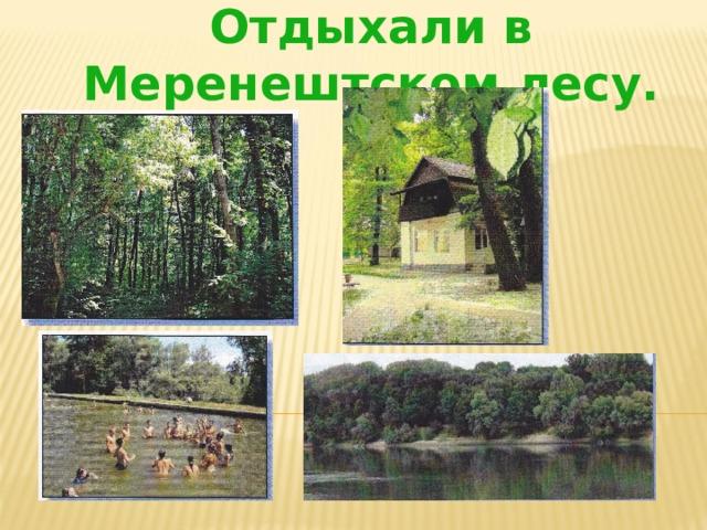 Отдыхали в Меренештском лесу.