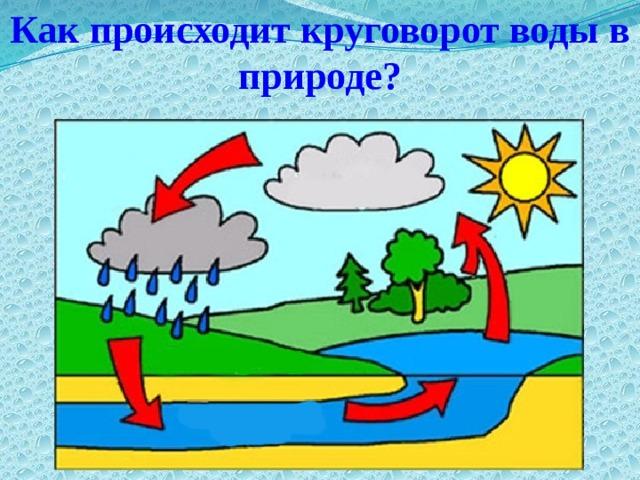Как происходит круговорот воды в природе? Использование документ-камеры.