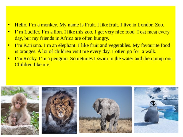 Hello, I'm a monkey. My name is Fruit. I like fruit. I live in London Zoo. I' m Lucifer. I'm a lion. I like this zoo. I get very nice food. I eat meat every day, but my friends in Africa are often hungry. I'm Karizma. I'm an elephant. I like fruit and vegetables. My favourite food is oranges. A lot of children visit me every day. I often go for a walk. I'm Rocky. I'm a penguin. Sometimes I swim in the water and then jump out. Children like me.