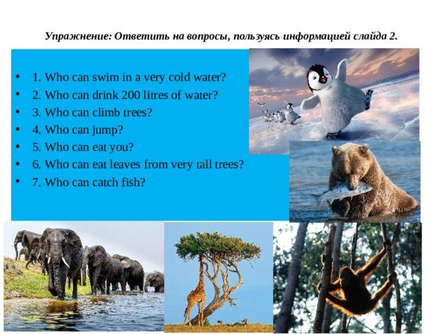 Упражнение: Ответить на вопросы, пользуясь информацией слайда 2.