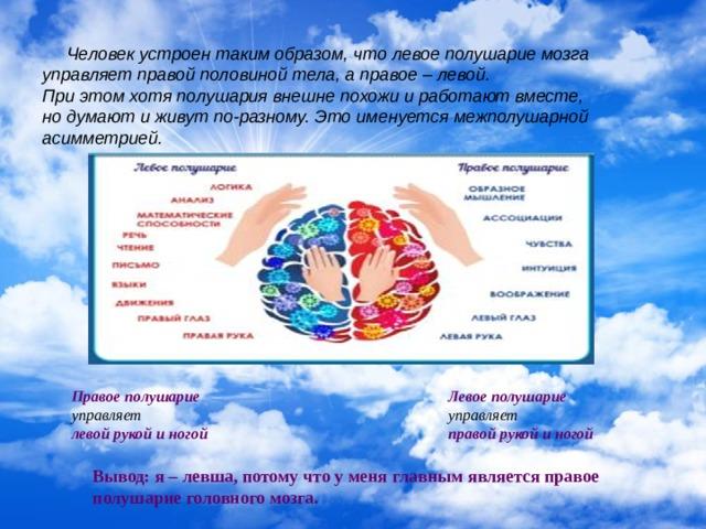 Человек устроен таким образом, что левое полушарие мозга управляет правой половиной тела, а правое – левой. При этом хотя полушария внешне похожи и работают вместе, но думают и живут по-разному. Это именуется межполушарной асимметрией. Правое полушарие Левое полушарие управляет управляет левой рукой и ногой правой рукой и ногой Вывод: я – левша, потому что у меня главным является правое полушарие головного мозга.