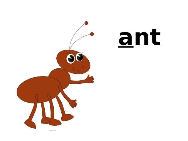 a a nt