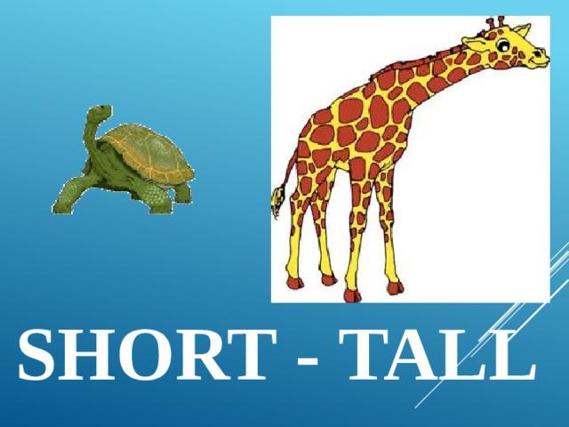 short - tall