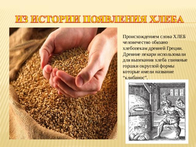 """Происхождением слова ХЛЕБ человечество обязано хлебопекам древней Греции. Древние пекари использовали для выпекания хлеба глиняные горшки округлой формы которые имели название """"клибанос""""."""