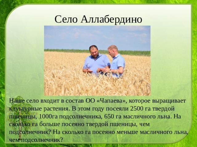 Село Аллабердино Наше село входит в состав ОО «Чапаева», которое выращивает клуьтурные растения. В этом году посеяли 2500 га твердой пшеницы, 1000га подсолнечника, 650 га масличного льна. На сколько га больше посеяно твердой пшеницы, чем подсолнечник? На сколько га посеяно меньше масличного льна, чем подсолнечник?