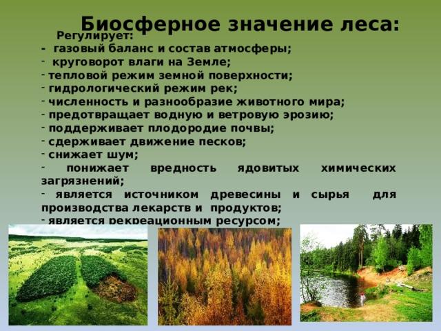 Биосферное значение леса:  Регулирует: - газовый баланс и состав атмосферы;  круговорот влаги на Земле;  тепловой режим земной поверхности;  гидрологический режим рек;  численность и разнообразие животного мира;  предотвращает водную и ветровую эрозию;  поддерживает плодородие почвы;  сдерживает движение песков;  снижает шум;  понижает вредность ядовитых химических загрязнений;  является источником древесины и сырья для производства лекарств и продуктов;  является рекреационным ресурсом;