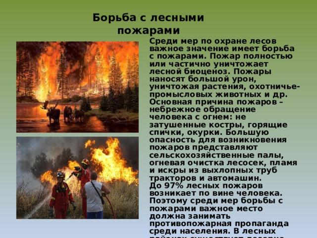 Борьба с лесными пожарами Среди мер по охране лесов важное значение имеет борьба с пожарами. Пожар полностью или частично уничтожает лесной биоценоз. Пожары наносят большой урон, уничтожая растения, охотничье-промысловых животных и др. Основная причина пожаров – небрежное обращение человека с огнем: не затушенные костры, горящие спички, окурки. Большую опасность для возникновения пожаров представляют сельскохозяйственные палы, огневая очистка лесосек, пламя и искры из выхлопных труб тракторов и автомашин.  До 97% лесных пожаров возникает по вине человека. Поэтому среди мер борьбы с пожарами важное место должна занимать противопожарная пропаганда среди населения. В лесных районах существует дозорно-сторожевая служба для обнаружения очагов пожара. При ликвидации лесных пожаров используют авиационные бригады, иногда на борьбу с пожарами мобилизуют воинские части и все население.
