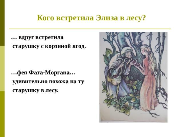 Кого встретила Элиза в лесу? … вдруг встретила  старушку с корзиной ягод.   … фея Фата-Моргана…  удивительно похожа на ту  старушку в лесу.