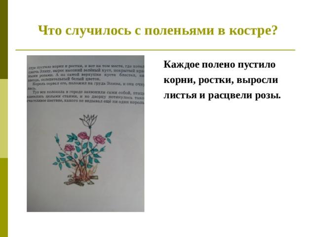 Что случилось с поленьями в костре? Каждое полено пустило корни, ростки, выросли листья и расцвели розы.