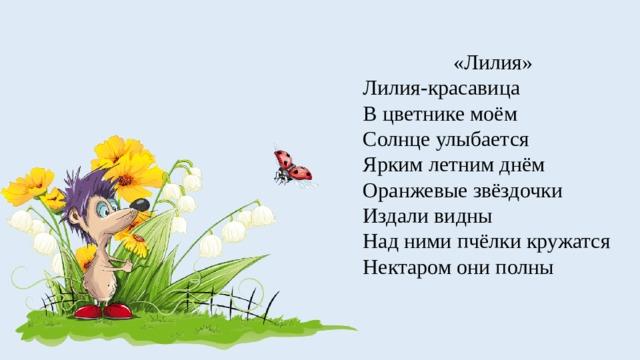 «Лилия» Лилия-красавица В цветнике моём Солнце улыбается Ярким летним днём Оранжевые звёздочки Издали видны Над ними пчёлки кружатся Нектаром они полны