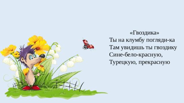 «Гвоздика» Ты на клумбу погляди-ка Там увидишь ты гвоздику Сине-бело-красную, Турецкую, прекрасную