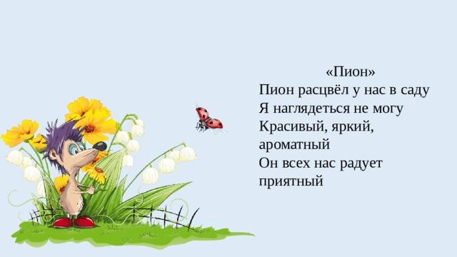 «Пион» Пион расцвёл у нас в саду Я наглядеться не могу Красивый, яркий, ароматный Он всех нас радует приятный