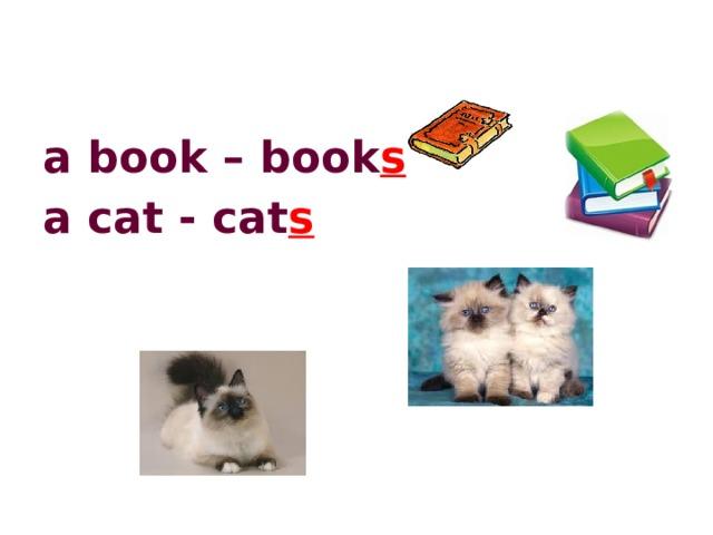 a book – book s a cat - cat s