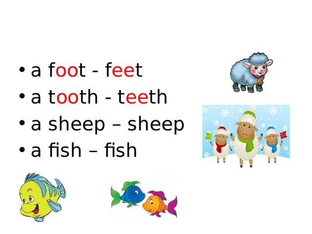 a f oo t - f ee t a t oo th - t ee th a sheep – sheep a fish – fish